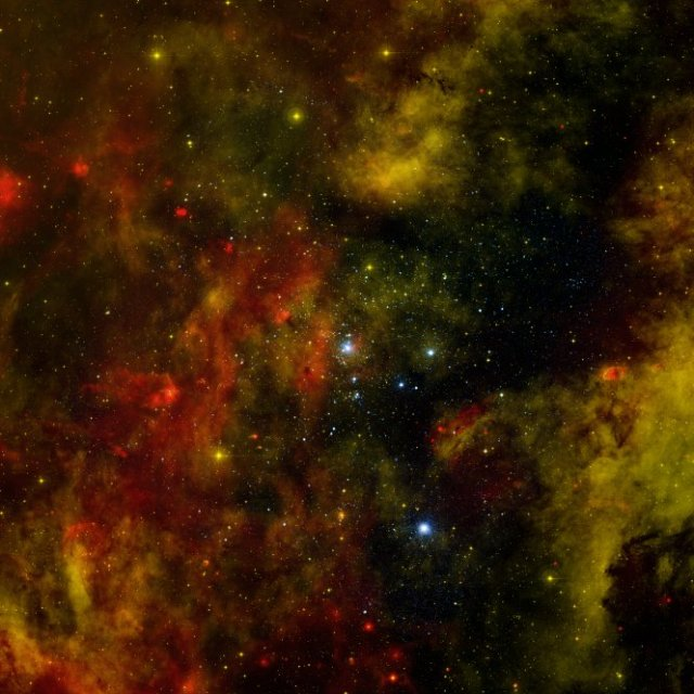 Nearby Stellar Cradle Of Stars